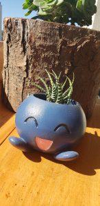 macetero 3d para cactus o suculentas